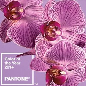 Color Study: Radiant Orchid – Pantone's Color of the Year for 2014