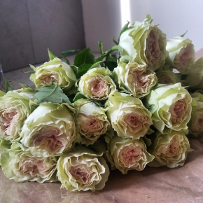 Wednesday Inspiration: FlowerPower!